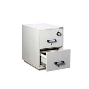 Guardall FRD(2)21 Secure Filing Safes